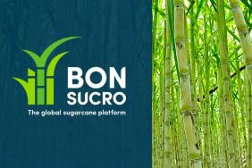 SCS Global Services Is Now a Bonsucro Licensed Training Provider Image