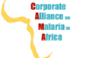 GBCHealth Presents Awards to Companies for Leadership on Ending Malaria  Image