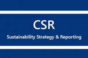 CSR Sustainability Strategy & Reporting Workshop Image