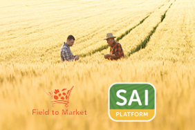 Field to Market and SAI Platform Announce First Use of Joint Equivalency Module by Leading Food Companies Image