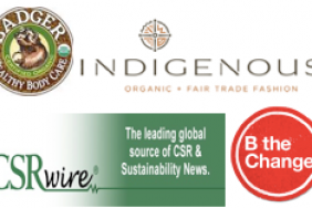 Business for Good: A Live Twitter Chat with W.S. Badger and INDIGENOUS on How to Compete to be Best FOR the World Image