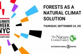 Climate Week NYC 2020: Don't Miss International Paper and The Nature Conservancy Discuss Forests as a Natural Climate Solution Image