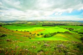 Public-Private Conservation Partnership Preserves 937 Acres in Coyote Valley Image