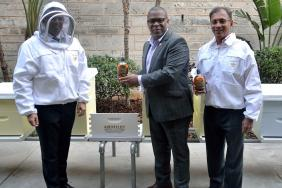 Bacardi Honors ABERFELDY's Barrels & Bees Program With Hive Installation at Global Headquarters Image