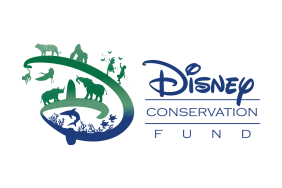 The Disney Conservation Fund Awards 2018 Conservation Grants Image