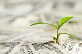 Northern Trust Provides $100 Million in Small Business Support Image
