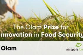 Olam to Speed Innovation to Address Global Food Security Image
