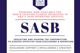 Getting Serious About SASB — Companies, Investors Are Tuning In. What About Accounting Firms? Image