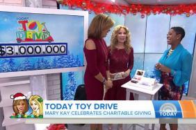 Mary Kay® Donates $3 Million to Today Show Toy Drive Image