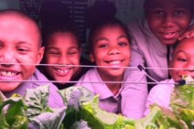 Hydro Gardening Increases Students' Interest in STEM: An Update on Our Pilot Project Image