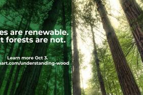 Wilsonart Escalates Commitment to Educate Architects and Designers about Endangered Woods and Protected Forests Image