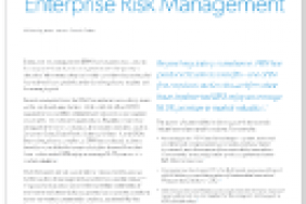 The Role of Sustainability in Enterprise Risk Management  Image