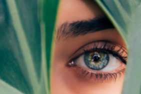 L'Oréal Launches Project to Help with Sustainable Transformation Image