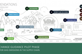 Methodological Guidance to Help Companies Account for Climate Change Impacts of Land Use and Deforestation Now Enters Pilot Phase Image