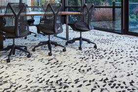 Owls Carpet Plank Collection Finds Inspiration in Birds of Prey Image