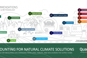 Accounting for Natural Climate Solutions Guidance Launches to Support Forest Protection and Soil Restoration As Part of Corporate Carbon Strategies Image