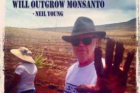 GMO Free USA will Tour with Neil Young in July Image
