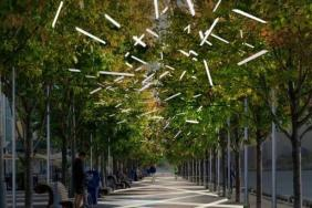 Discovery Green Unveils New Grand Allée, a Green Mountain Energy Sun Club Sustainability Project Image