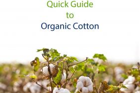 What You Wear Matters! Quick Guide to Organic Cotton Image
