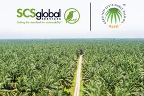 SCS Global Services Becomes First North American Certifier Accredited to New RSPO Principles and Criteria Standard for Palm Oil Plantations Image