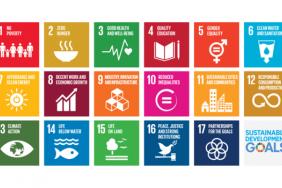 Catalyzing Action on the SDGs Through Collaboration Image