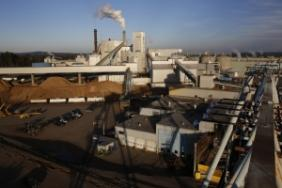 Sappi North America Invests $25M in its Somerset Mill Woodyard Image