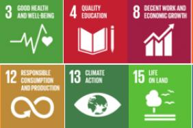 Globe to Focus on 9 UN Sustainable Development Goals to Help Build a #WonderfulPH Image