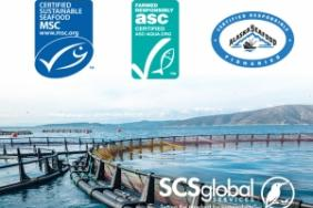 SCS Global Services Announces New Leadership Team for Sustainable Seafood Certifications Image