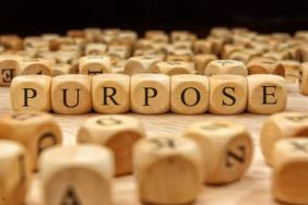 Corporate Purpose on the Rise: Companies on Path to Meet the Needs of All Stakeholders and Address Significant Social Issues Image