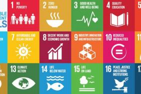 Canadian Organizations Tackling the SDGs Will Be Awarded at the 2nd Annual SDG Awards Image
