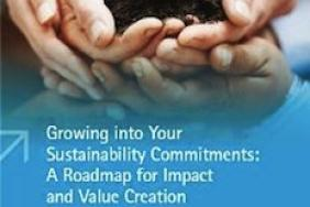 AccountAbility - UN Global Compact Study Demonstrates Value of Voluntary Corporate Sustainability Commitments Image