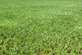 Cooler Turf with Greenplay Alternative Infill Image