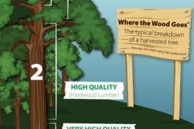 Responsible Forestry in Kamloops Is Saving Wood From Slash Piles Image