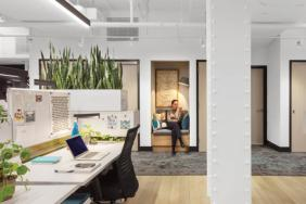With a Major Retrofit of Their New York Office, IWBI Walks the Walk Image
