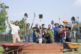 Whole Cities Foundation Awards 60 Community First Grants to Help Grow Local Food Systems Image
