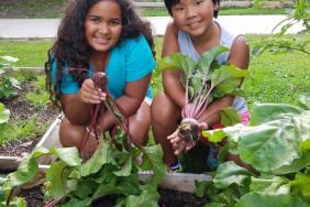 Whole Kids Foundation Raises $5.6 Million to Improve Children's Nutrition Image