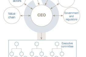 "CEO Decision""""Making for Sustainability Image"
