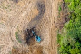 230 Investors With USD $16.2 Trillion in AUM Call for Corporate Action on Deforestation, Signaling Support for the Amazon Image