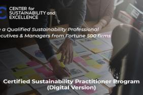 Practical Sustainability (ESG) Strategies Image