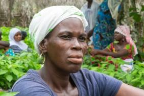 Going Beyond 'Fair Trade' With Hershey's Sustainable Cocoa Strategy Image