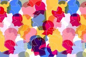 UPS Longitudes   Rethinking Supplier Diversity Image