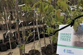 Duke Energy Invests Nearly $300,000 in Projects That Help Protect, Restore Natural Resources in South Carolina Image