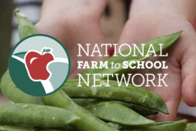 The Scotts Miracle-Gro Foundation, Hawthorne Gardening Company and National Farm to School Network Launch New Hydroponic School Garden Project Image
