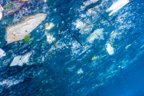 Global Plastic Leak Project Kicks off to Tackle Plastic and Microplastic Leakage Image