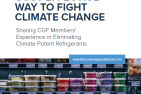 CGF Publishes New Report on Understanding the Most Cost-Effective Way to Fight Climate Change Image