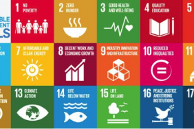 Winners of the 2nd Annual Sustainable Development Goals (SDGs) Awards Announced!  Image