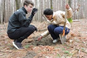 Wilsonart and Interlochen Center for the Arts Celebrate the Transformation of  The Riley Woods Forest through Art, Song, Dance and Planting Hundreds of Trees Image