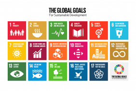 Global Goals Week: Reflections on Making Positive Change in 2020, and Always Image