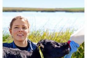 Aurora Organic Dairy's 2017 Corporate Citizenship Report Demonstrates Its Passion for Organic, and How Its Commitment to Animals, People and the Planet Drives Its Cow-To-Carton Model Image