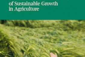 New BCG Report on Sustainability: It's Time to Plant the Seeds of Sustainable Growth in Agriculture Image